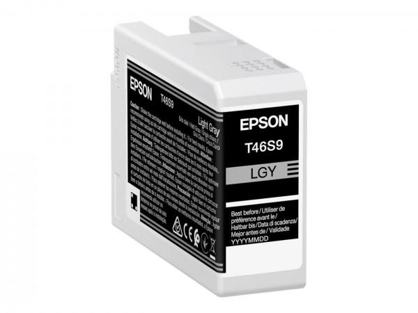 Epson Tinte T46S9 light gray