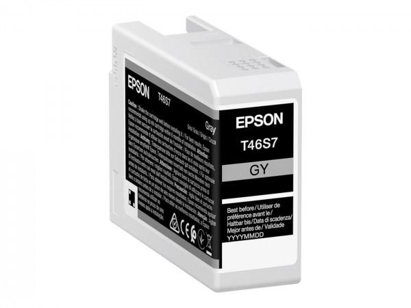 Epson Tinte T46S7 gray