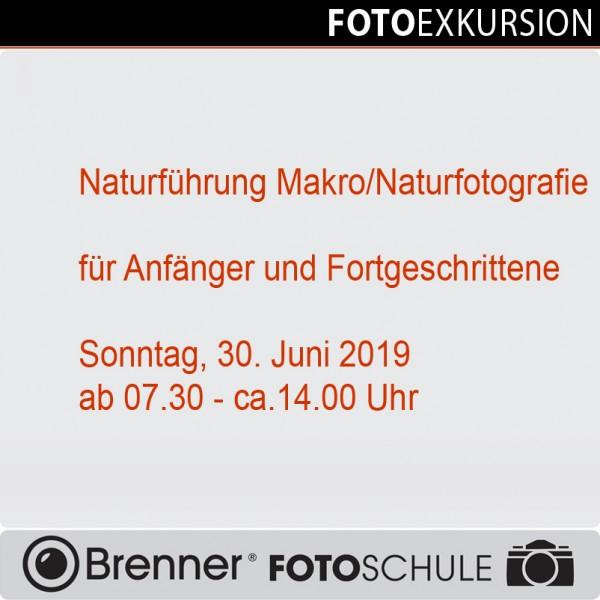 Workshop: Fotoexkursion
