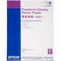Epson Premium Glossy Photo Paper 255g, 25 Bl., A2