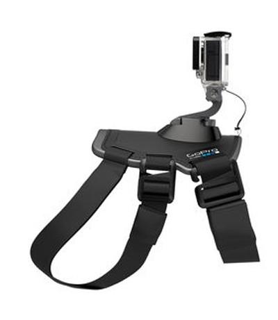 GoPro Fetch - Hundegeschirr